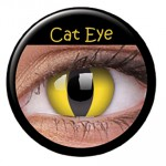 Cat eye 299kr